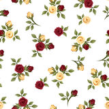 Vintage seamless pattern with roses. Royalty Free Stock Photo