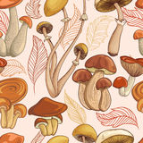 Vintage seamless pattern with set of mushrooms and autumn leaves. Stock Images