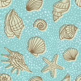 Vintage seamless pattern with shells. Stock Photography