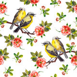 Vintage seamless repeated backdrop with birds in roses Royalty Free Stock Photos