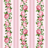 Vintage seamless stripped pattern with pink roses. Royalty Free Stock Images