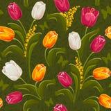 Tulips. Seamless background. Royalty Free Stock Image