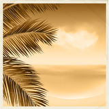 Vintage sepia tropical scene Stock Photos