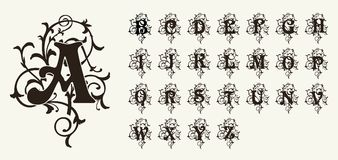 Vintage set capital letters, floral Monograms and beautiful filigree font. Art Deco, Nouveau, Modern style. Royalty Free Stock Photography