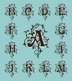 Vintage set capital letters, floral Monograms and filigree font. Stock Photos