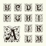 Vintage set capital letters,  Monograms and  font Stock Photography