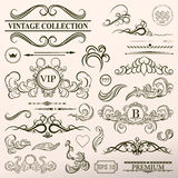 Vintage set decor elements. Elegance old hand drawing set. Outli Royalty Free Stock Photo