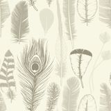 Vintage set feathers. Seamless pattern. Hand drawing. Vector ill royalty free stock photo