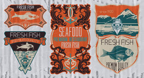 Vintage set of fish - vector. Logo, badge or label design template Royalty Free Stock Photo