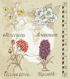 Vintage set with flowers 1 Royalty Free Stock Image