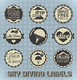 Retro Sky Diving Labels and Icons. Vintage set of sky diving labels and icons Royalty Free Stock Image