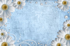 Vintage shabby background with daisy. Blue vintage shabby background with daisy Royalty Free Stock Images