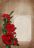 Vintage shabby background with red roses and card Royalty Free Stock Image