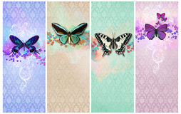 Vintage shabby chic background. With butterfly royalty free stock photo