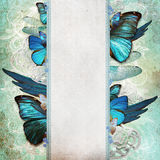 Vintage shabby chic background with butterfly vector illustration