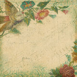Vintage Shabby Chic background with flowers. Vintage Shabby Chic scrapbook paper background with rose flower and bird frame Stock Photo