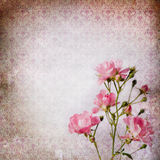 Vintage shabby chic background Stock Images