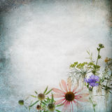 Vintage shabby chic background Royalty Free Stock Images
