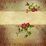 Vintage shabby chic background Royalty Free Stock Image