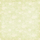 Vintage shabby chic green rose background texture Royalty Free Stock Photos