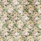 Vintage Shabby chic rose background texture Royalty Free Stock Photos