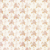 Vintage Shabby Chic Roses Pattern Stock Images