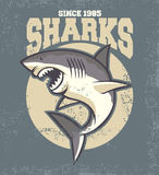 Vintage shark mascot Royalty Free Stock Photos