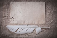 Vintage sheet plume on crumpled wrapping paper Royalty Free Stock Images