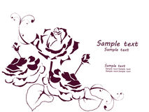 Vintage silhouettes of roses Stock Image