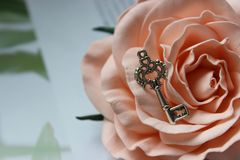 Vintage silver key on rose Bud, vintage retro style, selective focus. royalty free stock photography