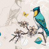 Vintage sketch background with green birds Stock Photo