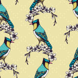 Vintage sketch background with green birds Royalty Free Stock Images