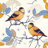 Vintage sketch background with orange birds Royalty Free Stock Photography