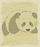 Vintage sketch of cute panda Stock Photography