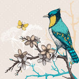 Vintage sketch of green bird with butterfly and flowers. Stock Photography