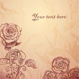 Vintage sketched flowers background Stock Image