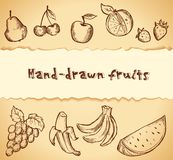 Vintage sketched fruits icon set Royalty Free Stock Photography
