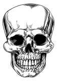 Vintage skull illustration Royalty Free Stock Photography