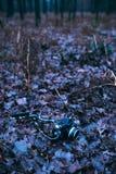 Vintage slr camera fallen on forest ground Stock Photos