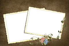 Vintage snapshot frames Royalty Free Stock Images
