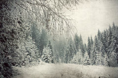 Vintage snowy fir trees Royalty Free Stock Photo