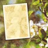 Vintage spring background. With canvas texture Stock Images
