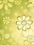 Spring beige flowers over vintage green background Stock Images