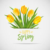 Vintage Spring Card - with Yellow Tulips. Flowers - in vector Royalty Free Stock Photos