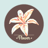 Vintage spring colorful polygon flower illustration Stock Photography