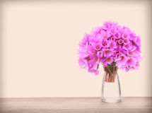 Vintage spring flowers Stock Photography