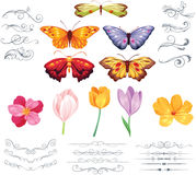Vintage Spring. A new hand-drawn vintage spring with fine details and vintage ornaments. This collection contains 5 detailed butterflies, 5 spring flowers and 20 Stock Photos