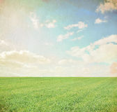 Spring, summer background Royalty Free Stock Photo