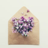 Vintage square card with close up opened craft paper envelope filled with spring blossom purple lilac flowers. Top view, flat lay. Stock Images