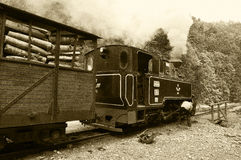 Vintage steam Train named Mocanita Stock Image